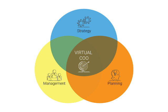 Virtual COO illustration